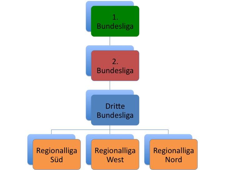 Ligastruktur des DFB in der Saison 2008/2009
